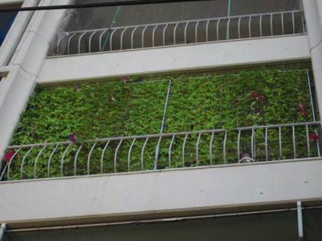 Constru es sustent veis t cnicas sustent veis for Cortina verde agua