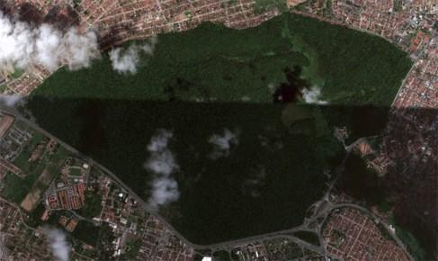 O verde visto do espaço: Cidades brasileiras